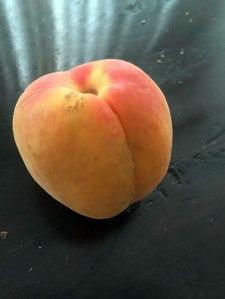 apricotbutt